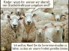 Schafe_Terror_Freiheit